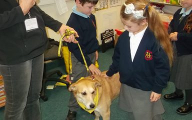 Dogs Trust visit Year 2