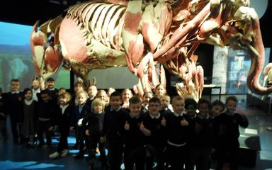 Year 1NS explore at Centre for Life