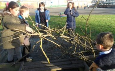 Natural Materials in Science Year 2
