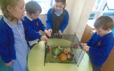 The Adventures of Supertato and Evil Pea in Reception