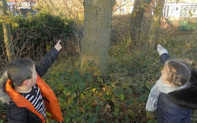 Our hunt for Incy Wincy Spider!