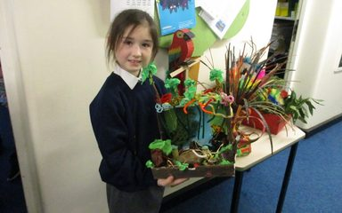 Y4 SJ's D.T Rainforest Diorama's