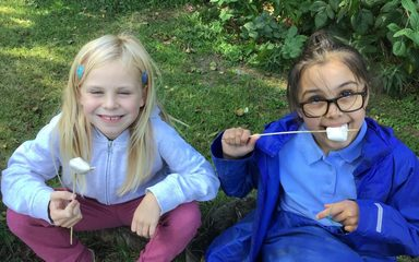 Year 3 Forest School continues