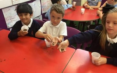 Exploring Soils in Y3 EB