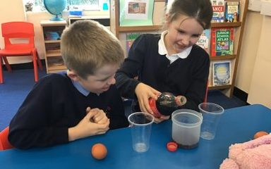 Working Scientifically in Year 4NS
